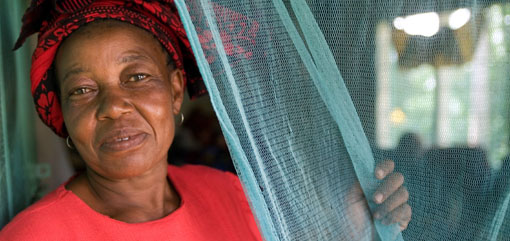 World Malaria Day 2011: Achieving Progress and Impact